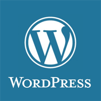 Did you create the wordpress websites from scratch?