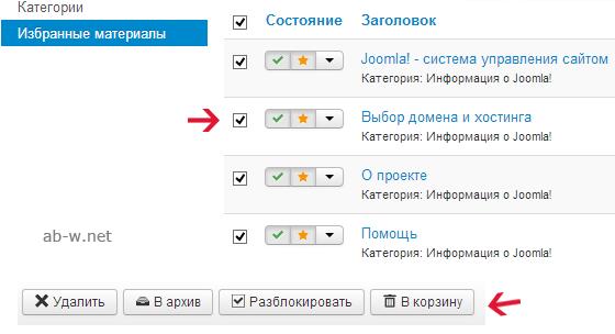 время регистрации домена beget